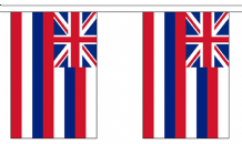 HAWAII U.S. STATE BUNTING - 9 METRES 30 FLAGS